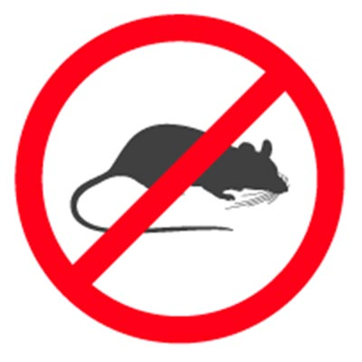 Rat Rodent Exterminators in Simi Valley and Ventura County CA