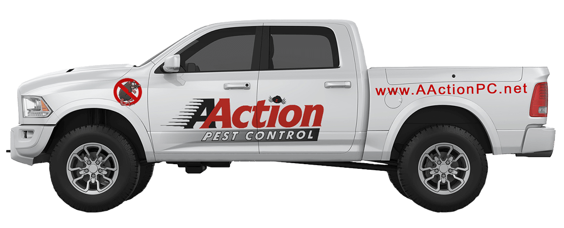 Pest Control Chatsworth CA Exterminator