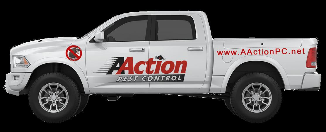 Pest Control Chatsworth CA Exterminator