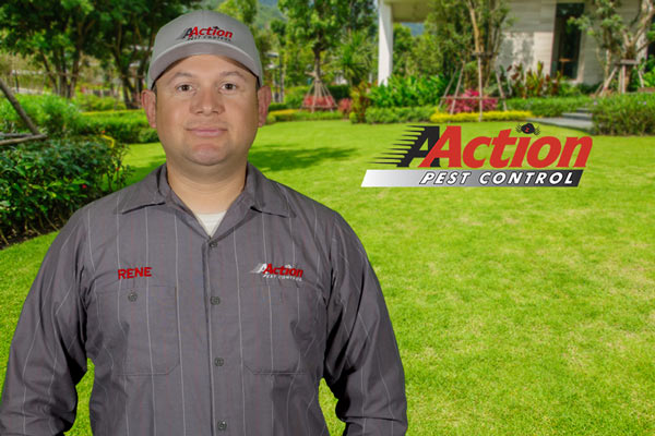 Our Staff Best Pest Control Service In Ventura County